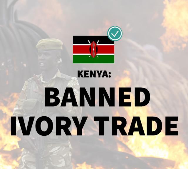 Kenya: Banned Ivory Trade